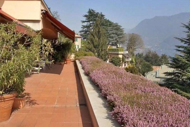 terrazza con piante 1 (Copy)