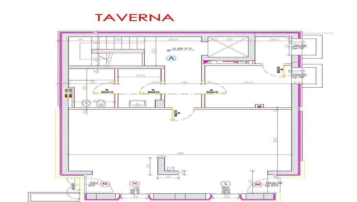 Pianta taverna
