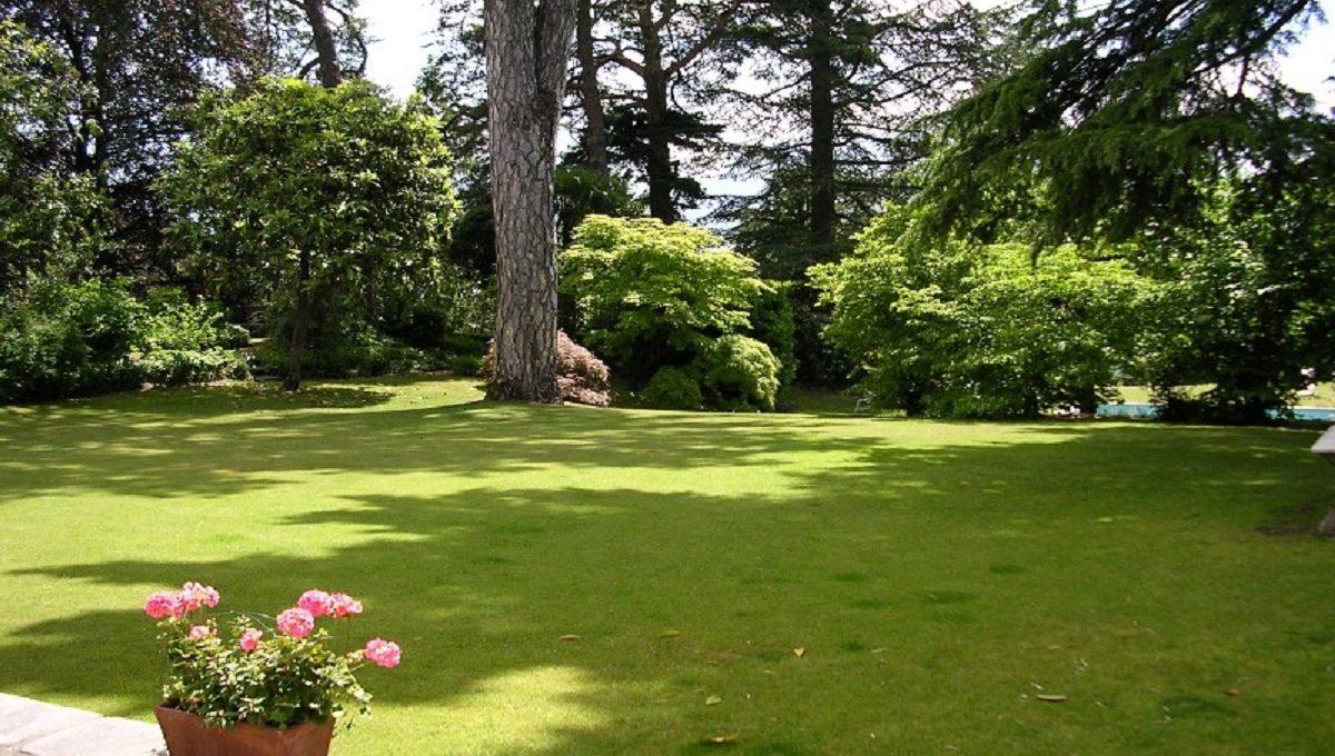 giardino con alberi ad alto fusto
