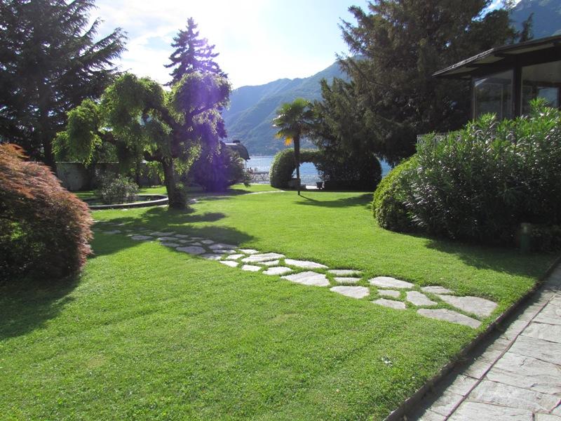 giardino a lago piantumato