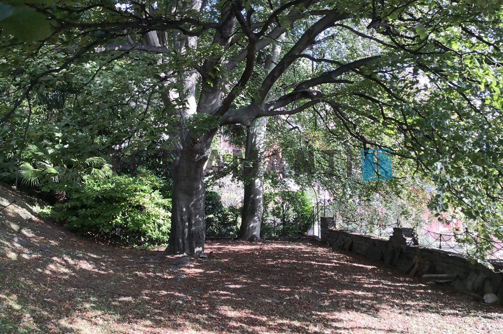 ampio parco