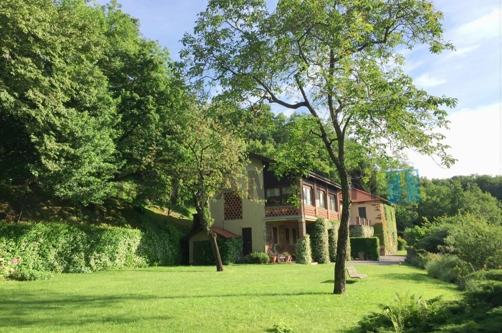 villa vendita giardino como